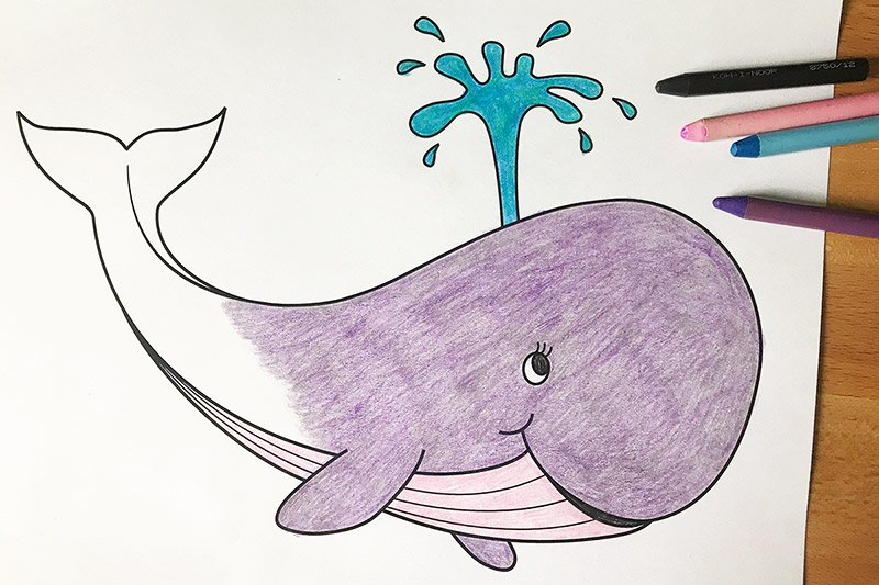 Image of Colouring Book Whale